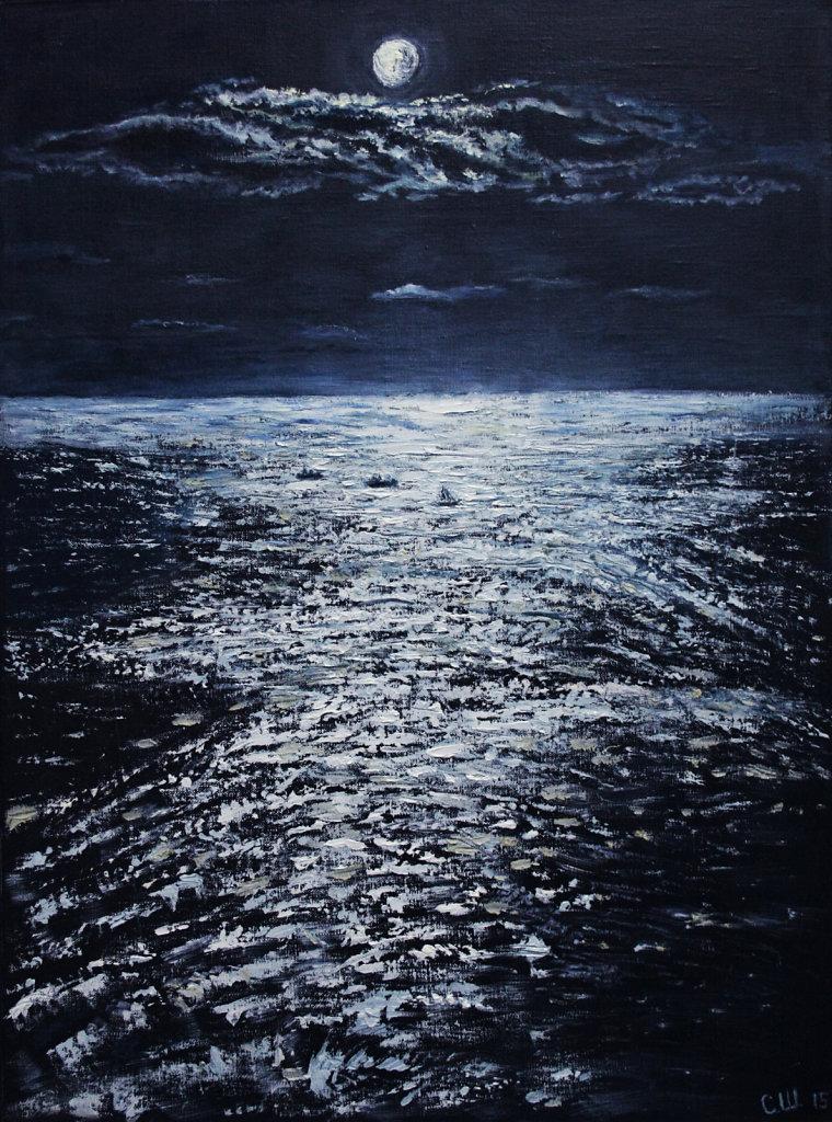 Лунный вечер в серебре
